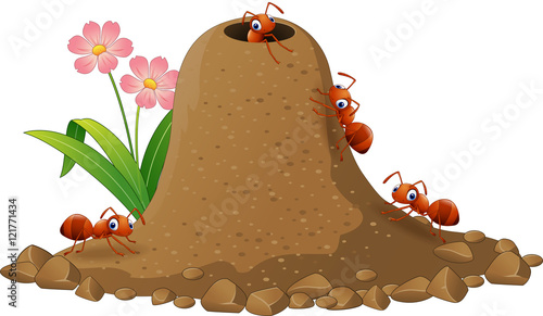 Photo Cartoon ants colony and ant hill