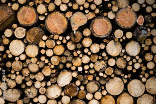 In de dag Brandhout textuur Detail view of chopped wood. Texture of wooden logs.