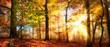 canvas print picture - Sonne scheint in einem bunten Wald im Herbst bei Nebel