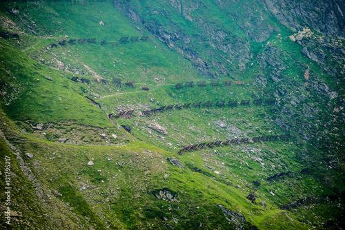Fototapeta Snow fences on the slope next to Transfagarasan Road in southern section of Carpathian Mountains in Romania obraz na płótnie