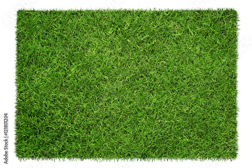 Obraz Close up of green grass texture isolated on white - fototapety do salonu