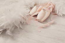Pink Ballet Pointe Shoes And F...