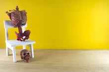 Skeleton On White Chair