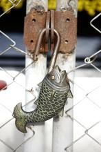 Key Fish