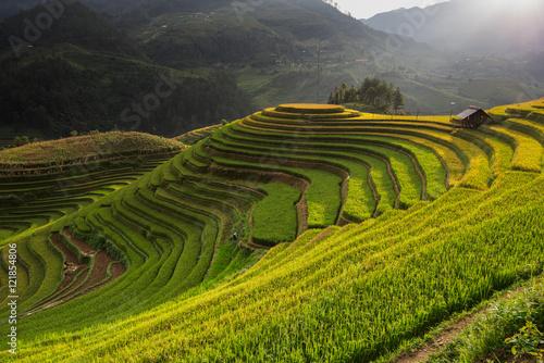 Foto auf Gartenposter Reisfelder Beautiful landscape rice fields on terraced of Mu Cang Chai