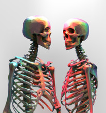 A Couple Of Polygonal Skeleton In Rainbow Color On Bright Backgr
