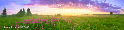 Photo sur Toile Jaune de seuffre rural summer landscape with sunrise