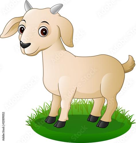 Poster Dogs Cartoon goat