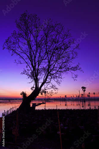 Foto op Plexiglas Violet Silhouette twilight sunset sky reflect on the water with palm tree landscape