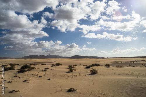 Poster de jardin Desert de sable Fuerteventura