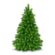 Christmas Tree, Detailed Vector Illustration