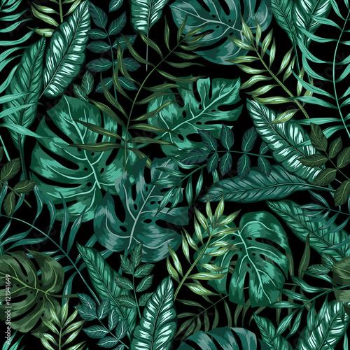 Graficzny artystyczny wzór dżungli tropikalnej natury, nowoczesny stylowy nadruk w tle liści na całej powierzchni z podzielonym liściem, filodendronem, liściem palmowym, liśćmi paproci