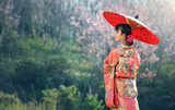 Asian woman wearing traditional japanese kimono, sakura background