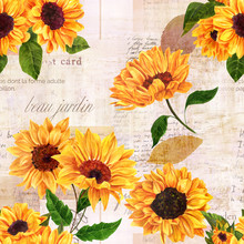Seamless Pattern With Watercolor Sunflowers On Old Ephemera
