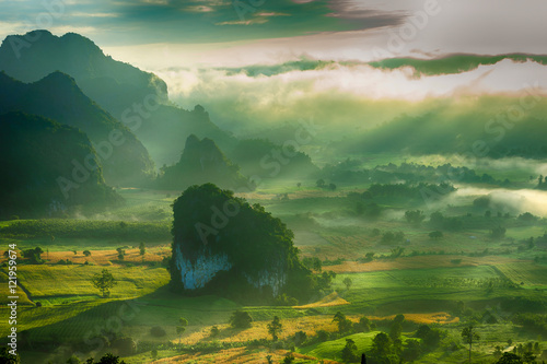Foto op Canvas Lime groen The sunshine day with mist and mountain in the morning