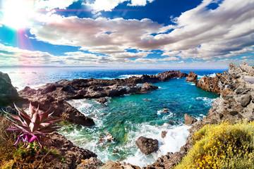 FototapetaCala y mar.Isla de Tenerife.Canarias.Paisaje marino y roca volcanica.Viajes y aventuras por la costa.Vegetación y acantilado bajo los rayos del sol