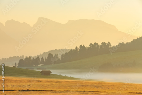 Spoed Foto op Canvas Cappuccino Foggy morning in Alpe di Siusi in Dolomites, Italy