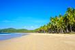 Palm-lined white sand beach at Nacpan Beach, El Nido, Palawan