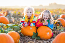 Kids Picking Pumpkins On Hallo...