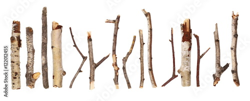 Obraz na płótnie Twigs, big set macro dry branches birch isolated on white background, with clipp
