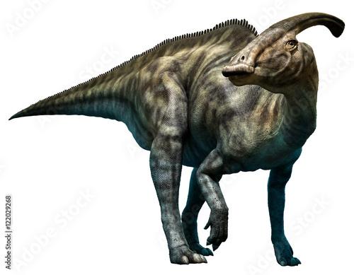 Fotografie, Obraz  Parasaurolophus walkeri