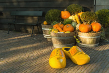 Pumpkins And Fall Harvest Decorative Vegetables In A Wicker Basket For Thanksgiving Decoration