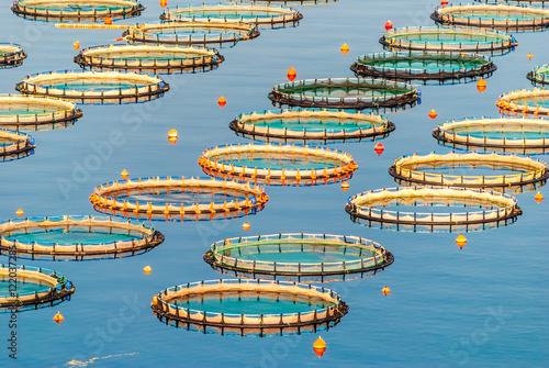 Fish farming in Myrtoan Sea Canvas Print
