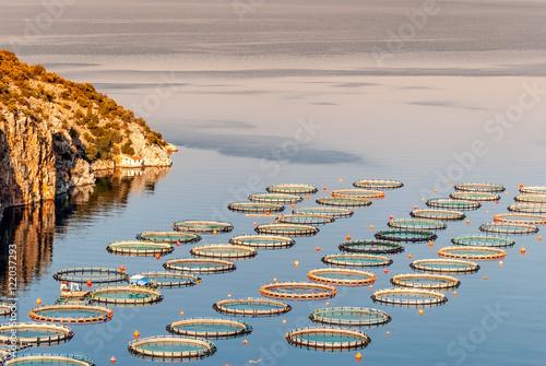 Fish farming near Epidaurus, Greece Canvas Print