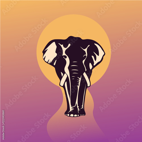 elephant silhouette at sunset Canvas Print