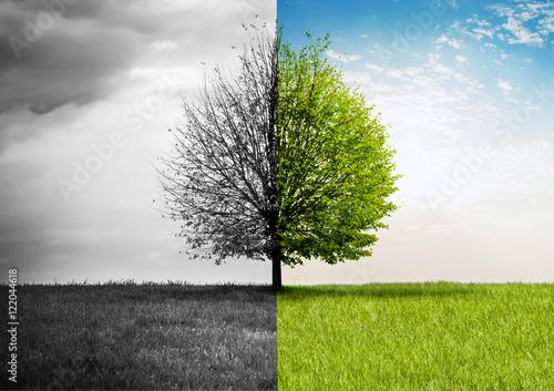 Poster Sommer-Herbst