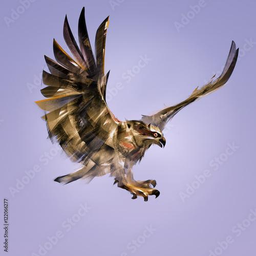 art bird of prey hawk in attack Wall mural