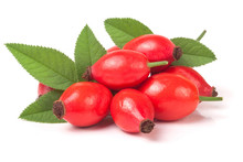 Rose Hip Berry With Leaves Iso...