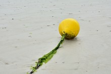 Bouée Jaune En Plastique Au Bout D'une Corde Sur Une Plage à Marée Basse