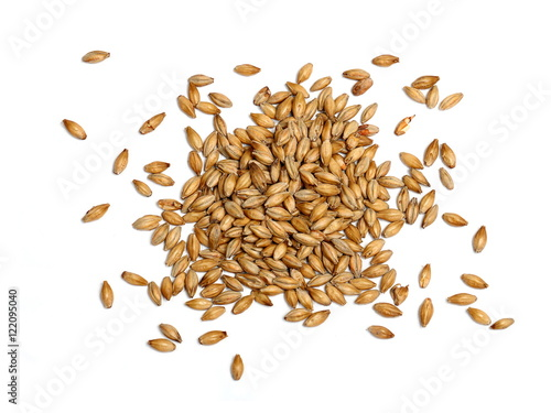Foto Malted Barley on White Background