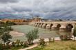 Римский мост. Кордова. Испания