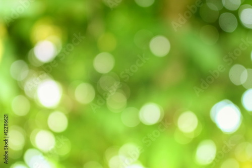 Photo  Bokeh color tone moss, Abstract natural  background.