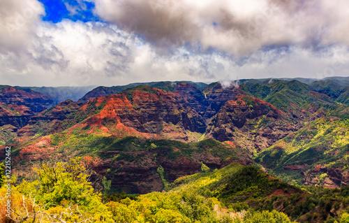Recess Fitting Deep brown Kauai in Hawaii