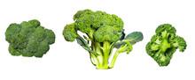 Set Of Ripe Broccoli Isolated On White Background.