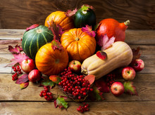 Abundant Harvest Concept With Pumpkins, Apples And Berries