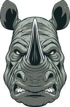 Ferocious Rhinoceros Head
