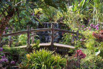 Fototapeta Ogrody Waterfall in botanic garden Chiang Mai ,Thailand.