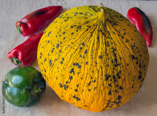 Fotografie, Obraz  Ripe spotted round yellow Turkish delicious melons.