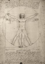 Zeichnung Leonardo Da Vinci
