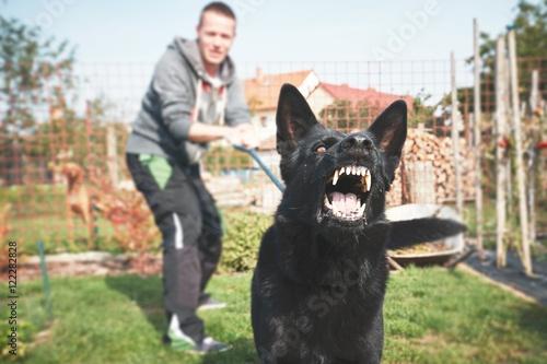 Valokuva  Aggressive dog is barking