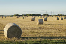 Hay Bales In A Field At Sunset...