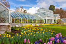 Seattle Public Conservatory Of...