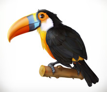 Toucan. 3d Vector Icon