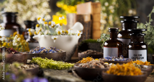 Alternative medicine, dried herbs and mortar on wooden desk back Canvas Print