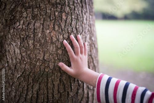 Fotografía  大木に触る子供の手