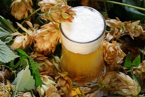 Photo  birra artigianale e luppolo
